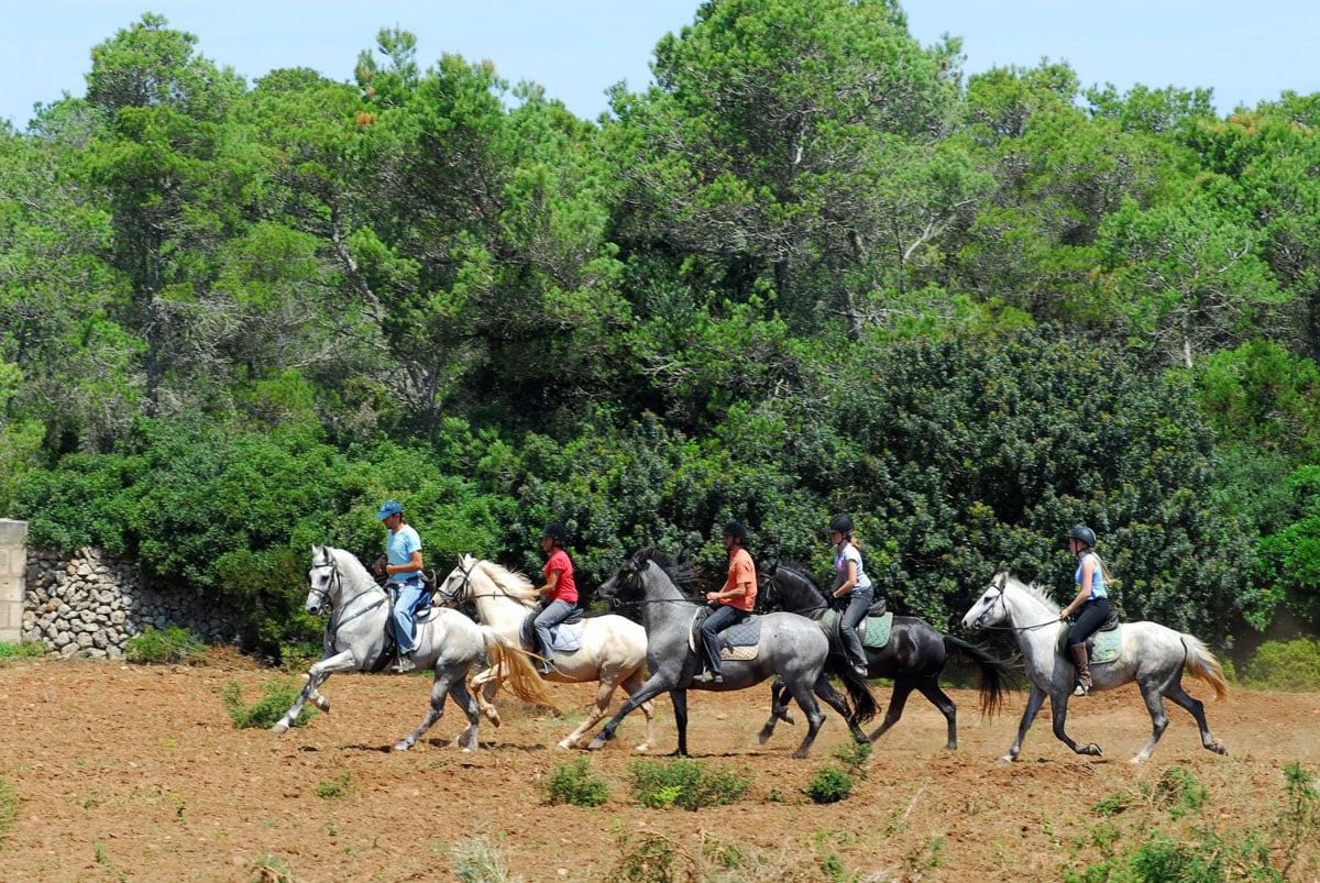 Explorar España a lomos de un caballo