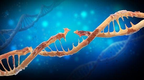 Inteligencia Artificial y ADN