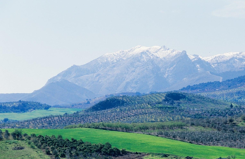 La sierra de las Nieves: el paraíso helado