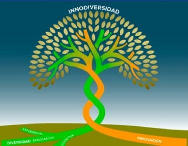 innodiversidad