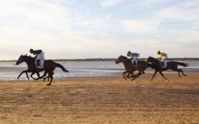 Andalucía deja huella: arte e historia a lomos del caballo andaluz