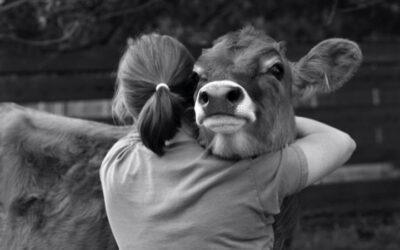 Veganismo: ¿Qué es ser ético hoy día?