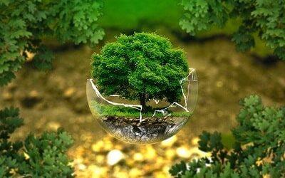Los'green influencers'en segunda posición en influencia ecológica