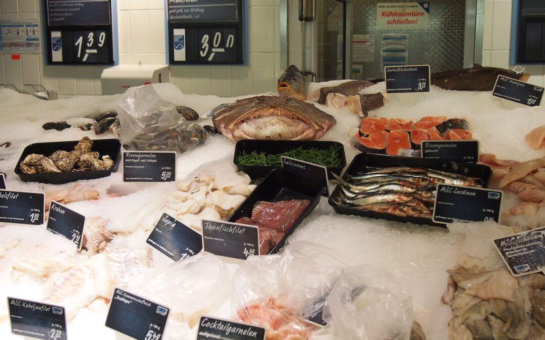 Los salmones transgénicos llegan a los supermercados de EEUU