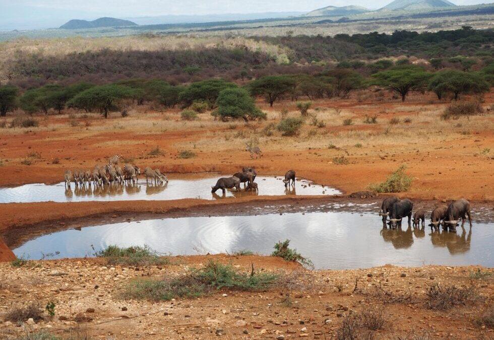 La ruta de Karen Blixen en Kenia