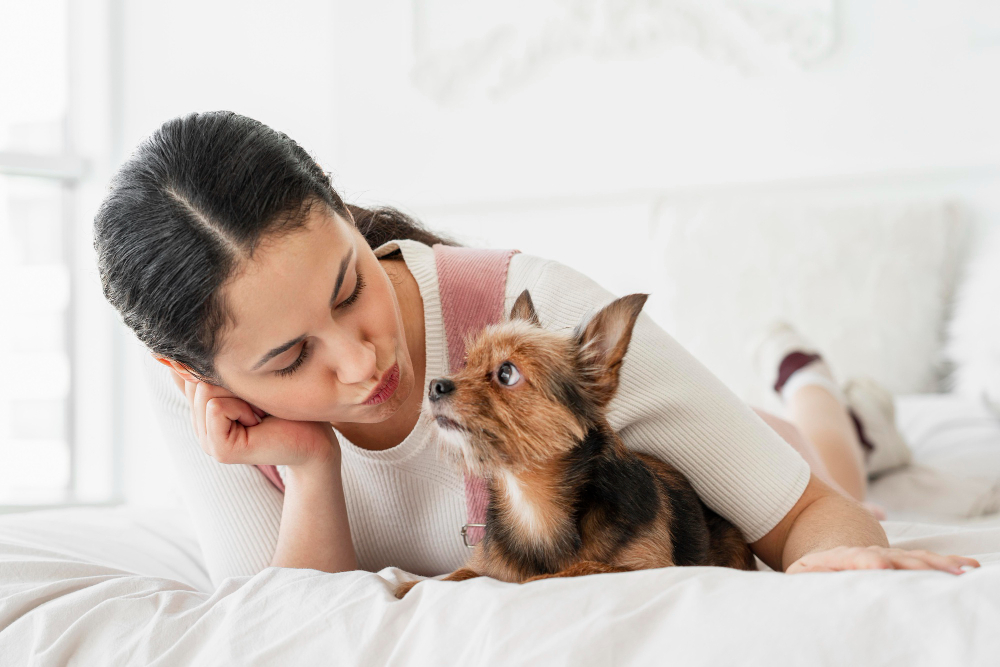 Hoteles con encanto para viajar con mascota